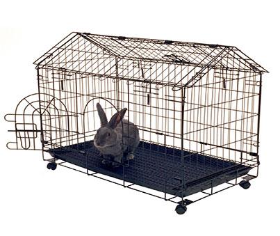 Frame Bunny House