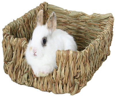 Woven Grass Rabbit Bed