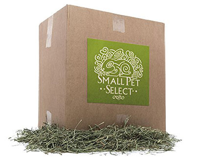 Small Pet Rabbit Food