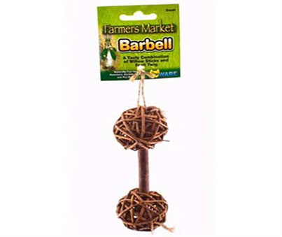 Willow Barbell Chew Toy