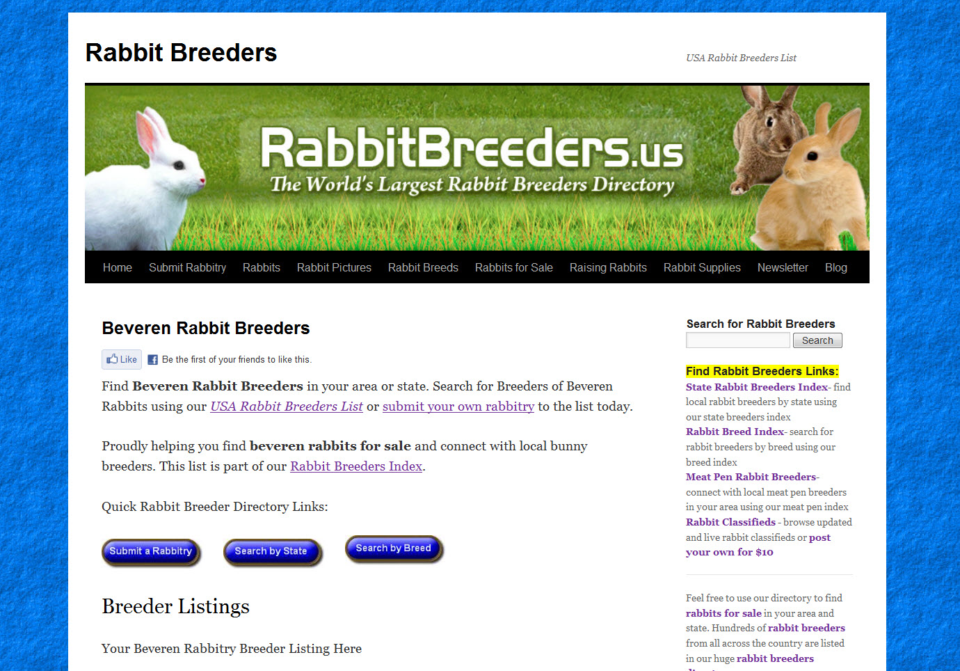 Beveren Rabbits for Sale