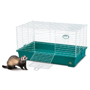 Cage for a Dwarf Rabbit