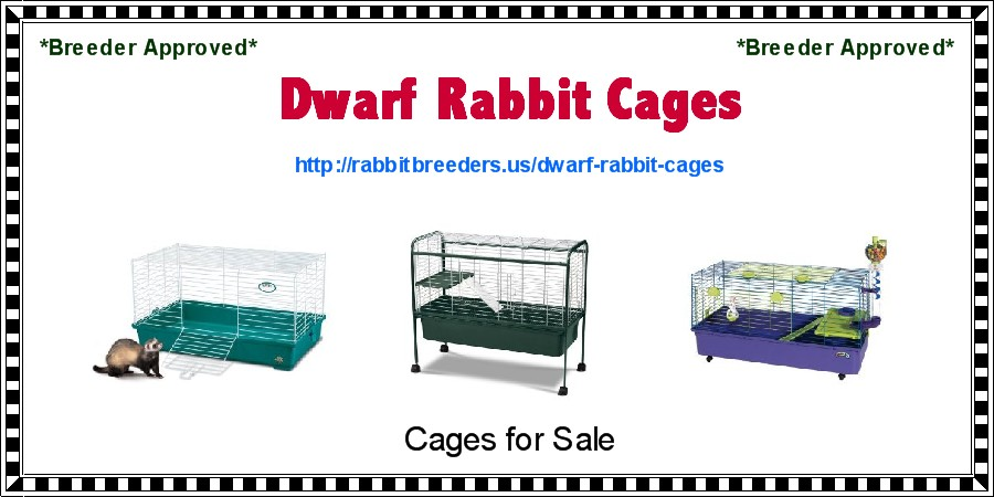 Dwarf Rabbit Cages