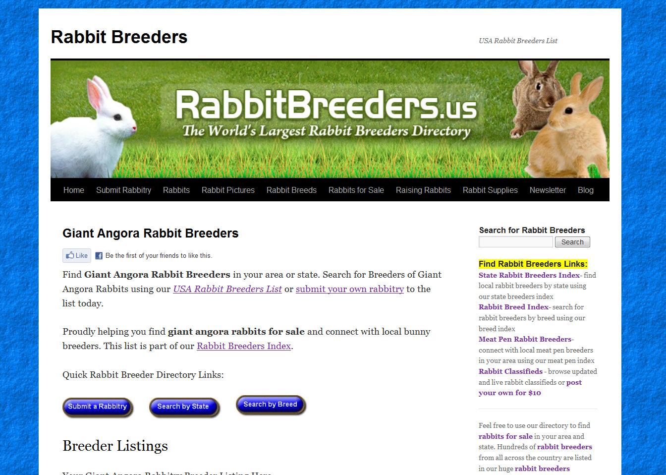 Giant Angora Rabbits for Sale