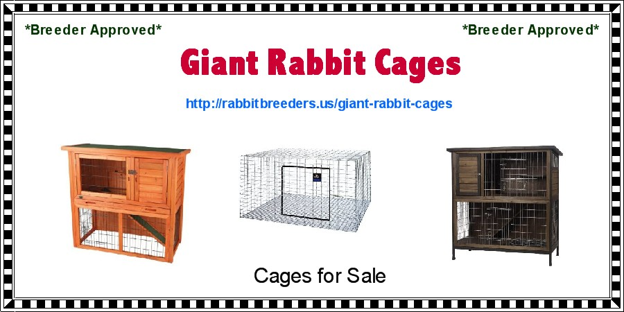 Giant Rabbit Cages