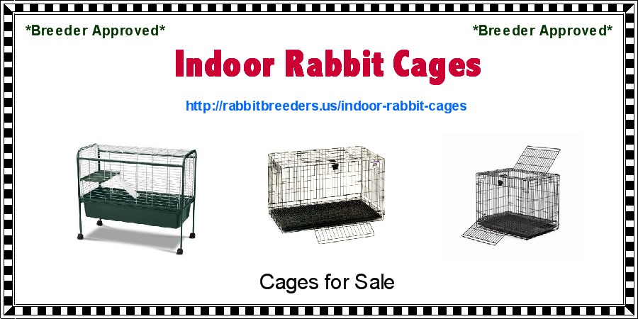 Indoor Rabbit Cages