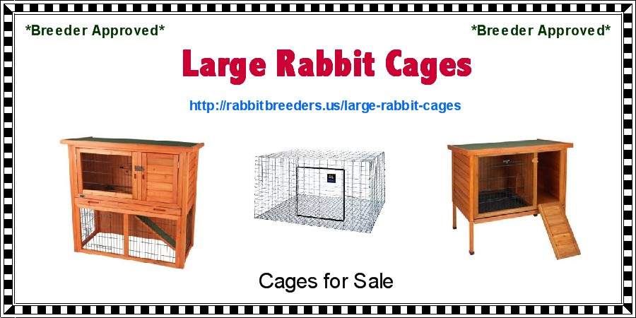 Large Rabbit Cages