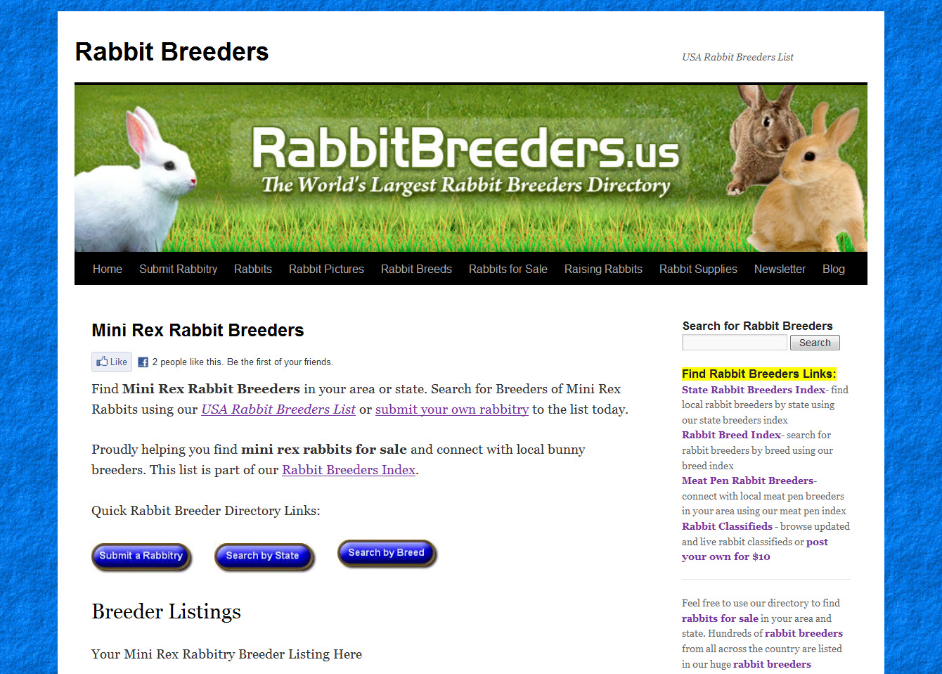 Mini Rex Rabbit Breeders