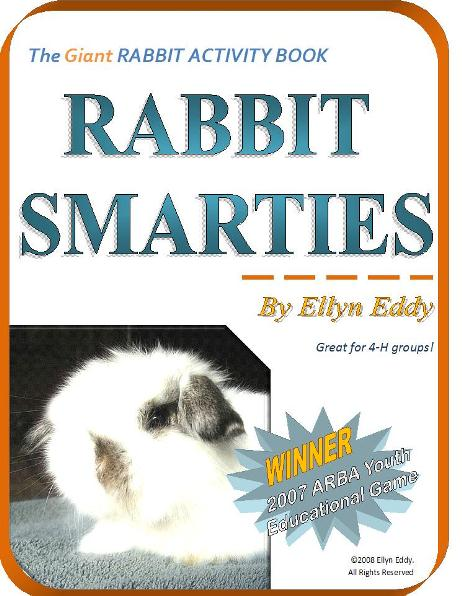 Rabbit Activity Book