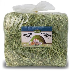 Pet Rabbit Hay