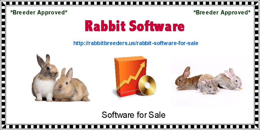 Rabbit Software