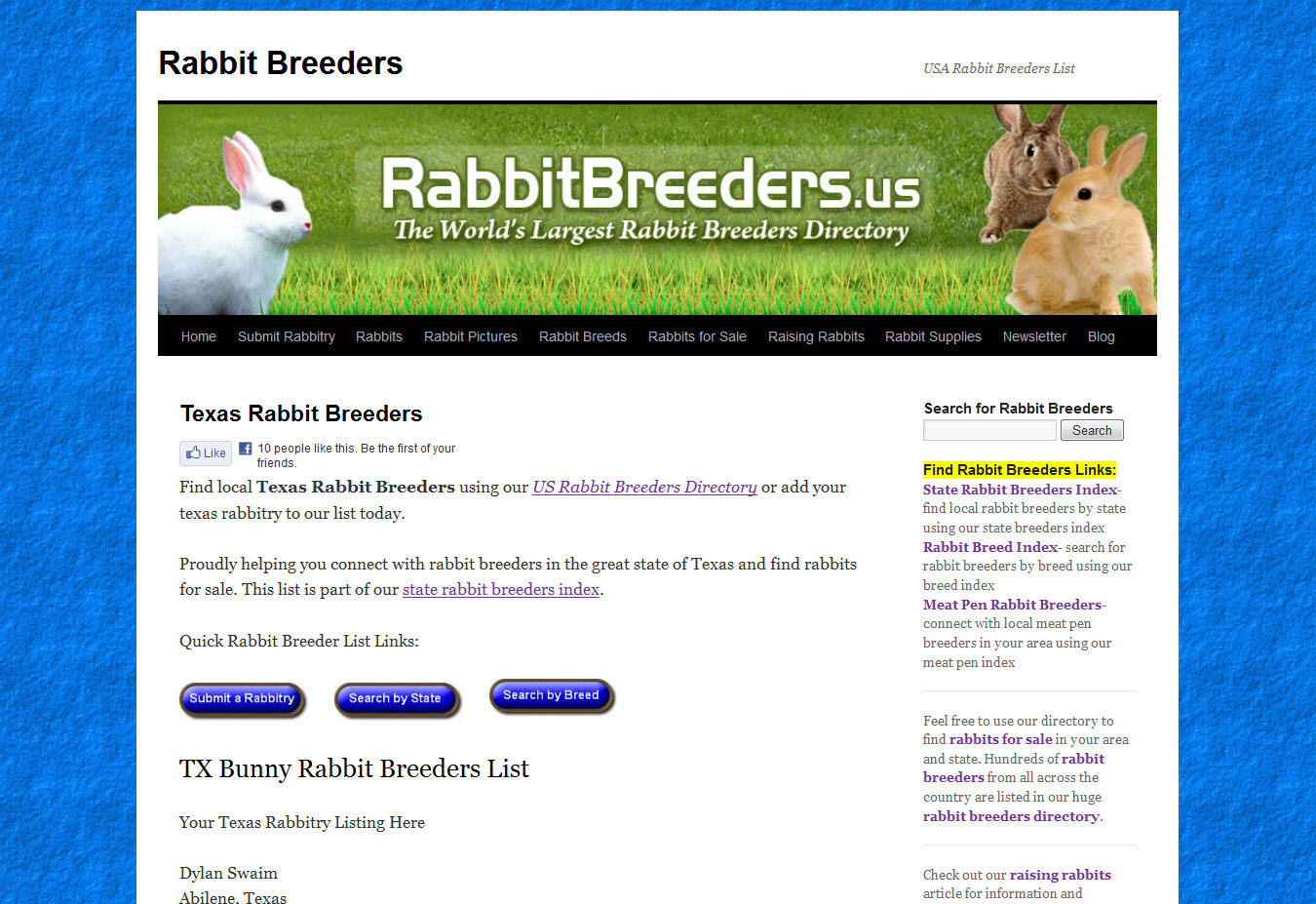 Rabbits for Sale in Dallas