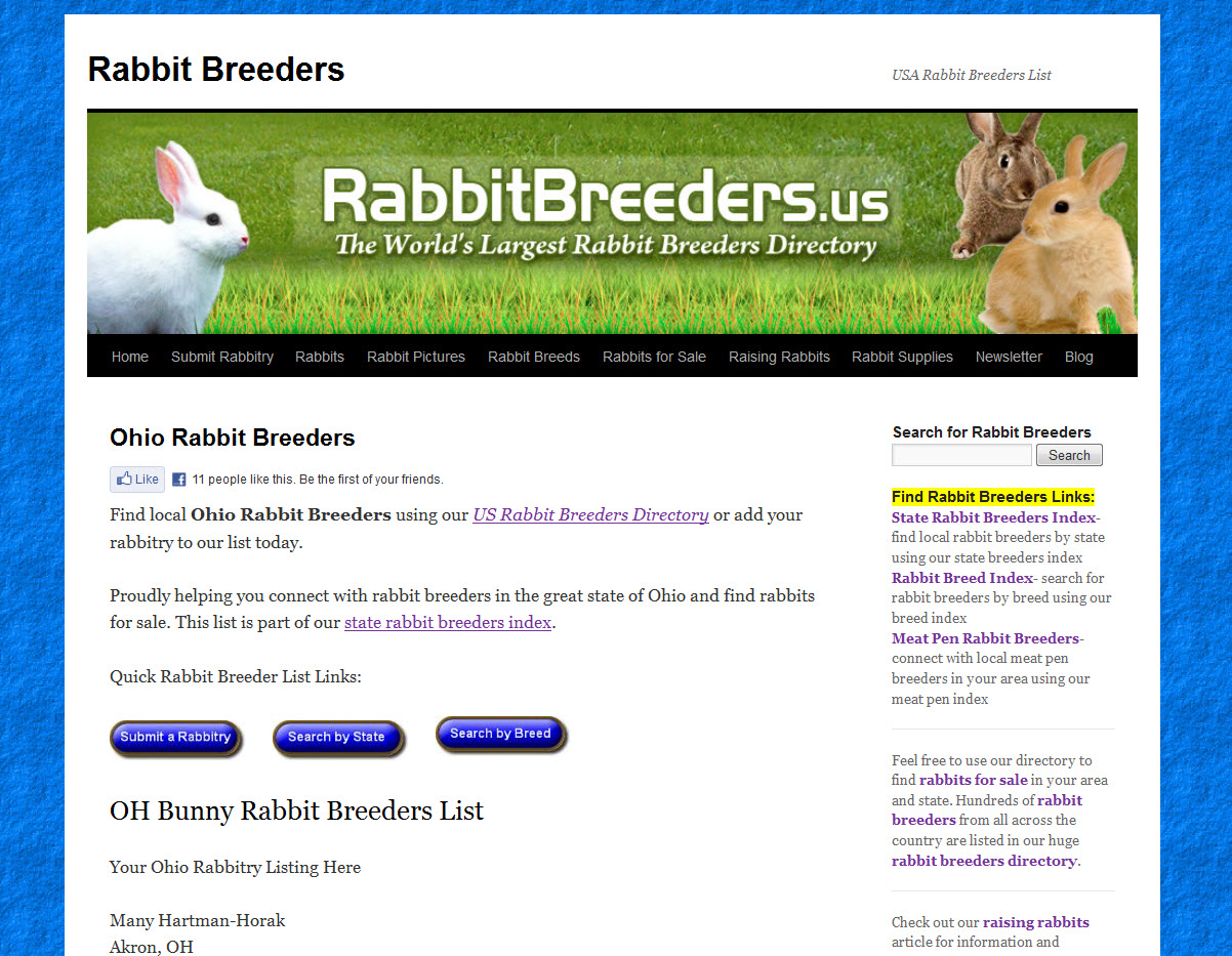 Rabbits for Sale in Dayton