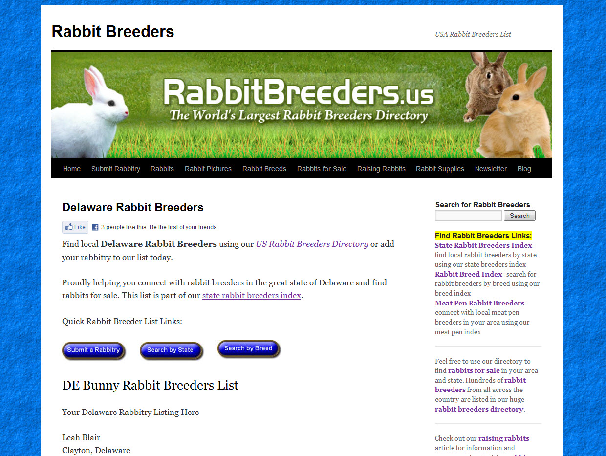 Rabbits for Sale in Delaware