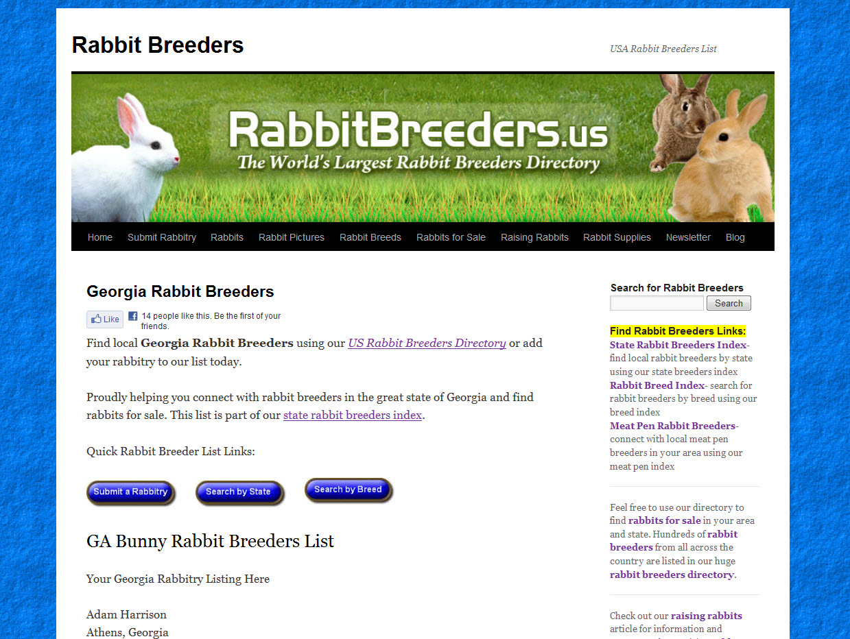 Rabbits for Sale in Georgia