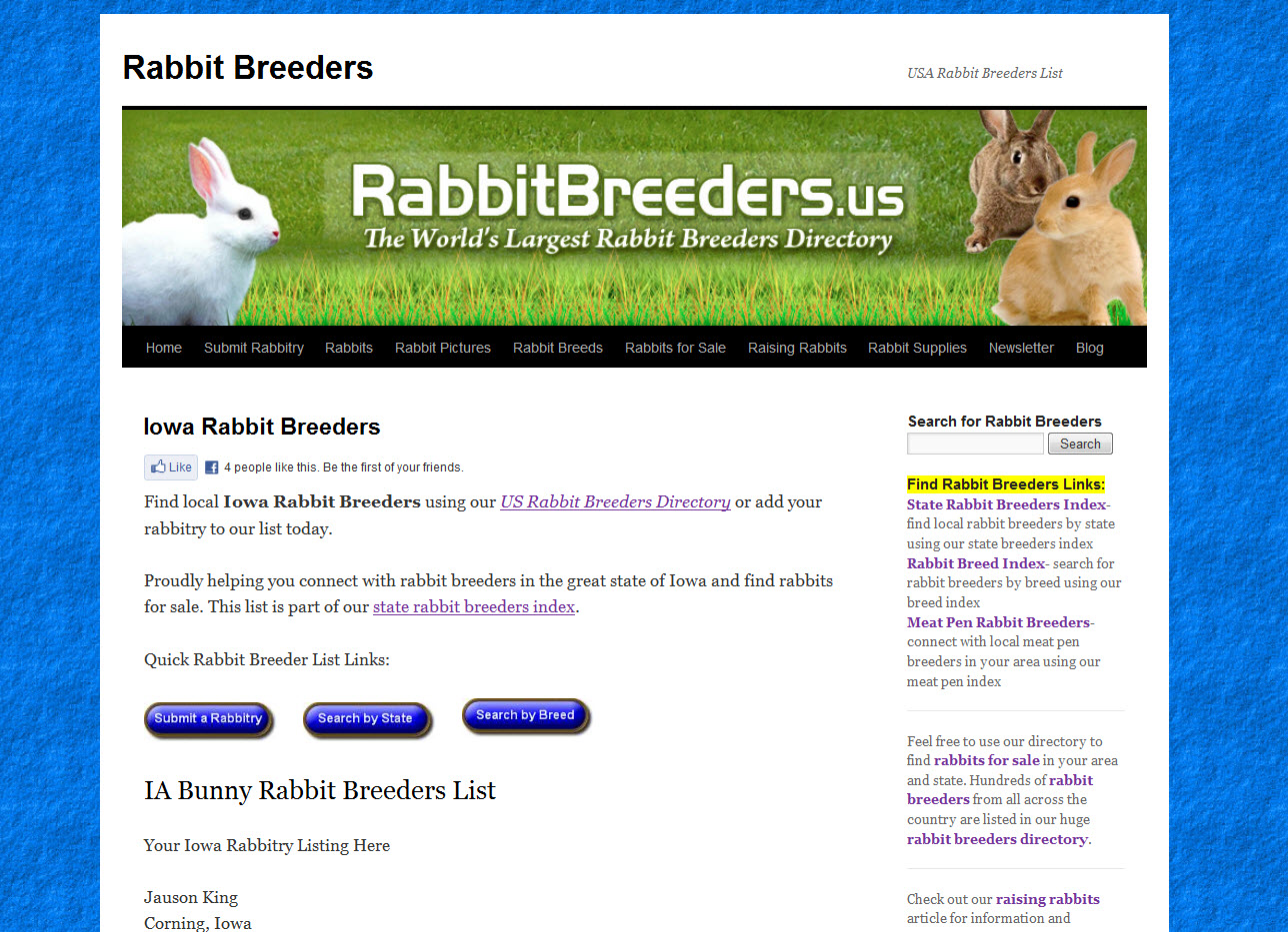 Rabbits for Sale in Iowa