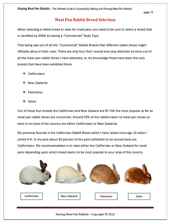 Raising Meat Pen Rabbits Sample Page
