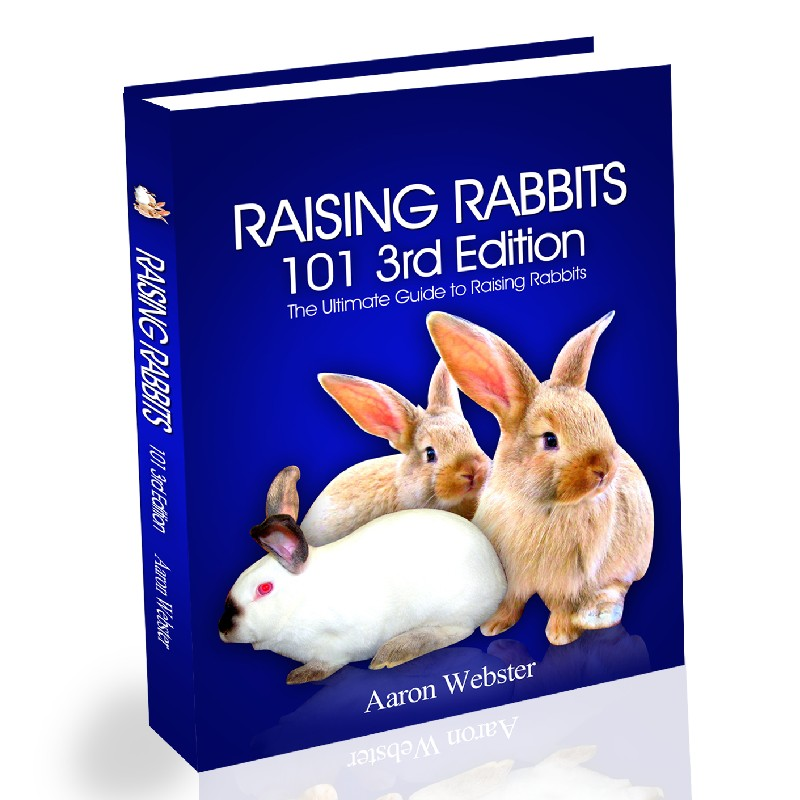 Raising Rabbits 101