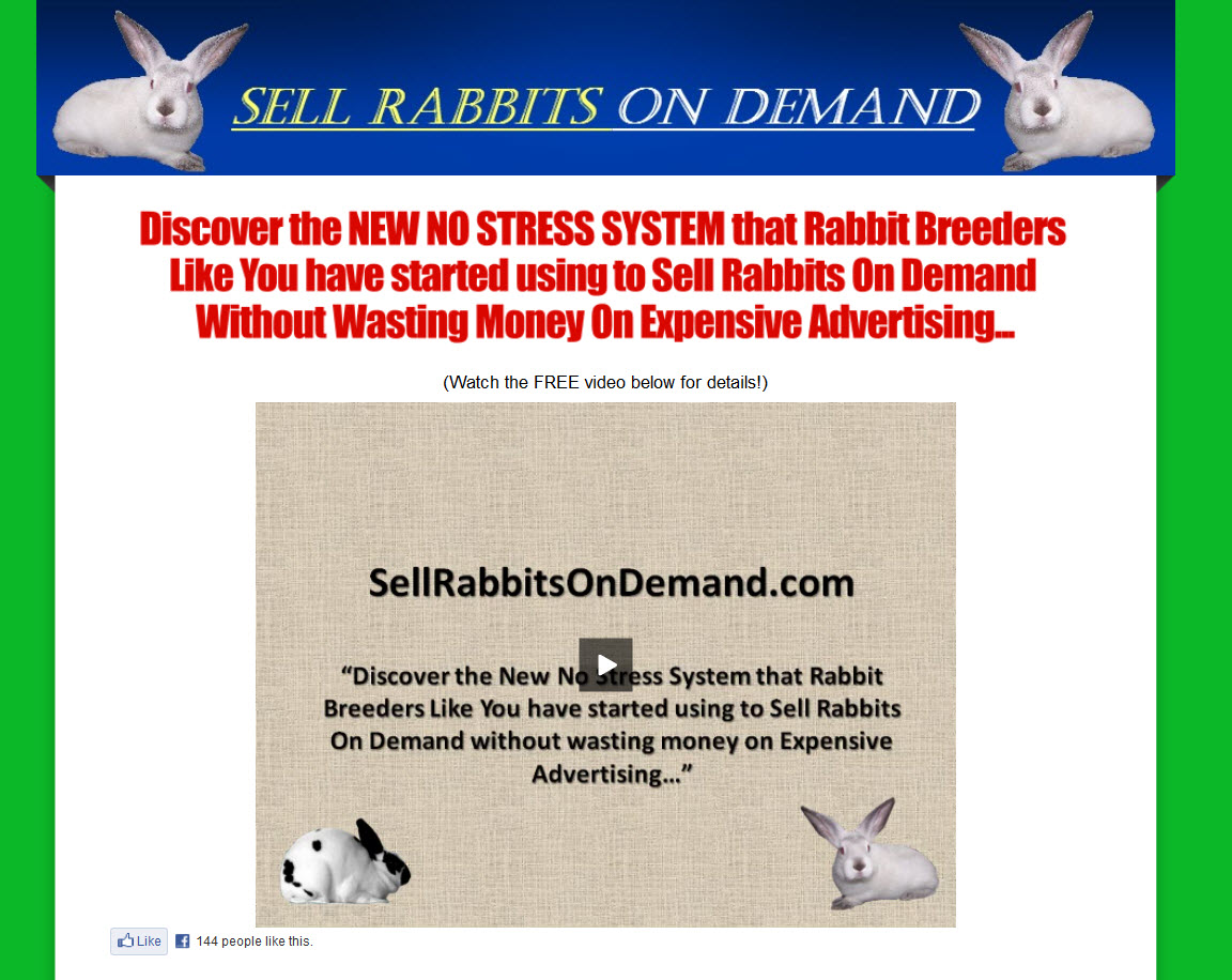Sell Rabbits