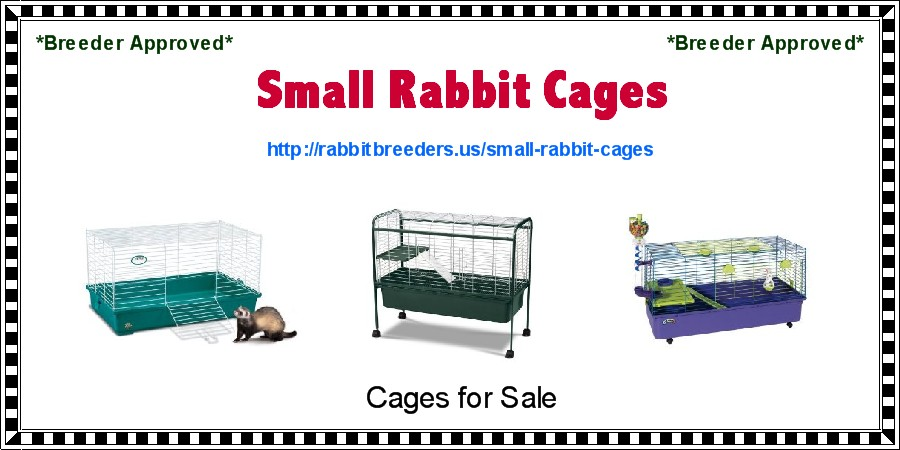 Small Rabbit Cages