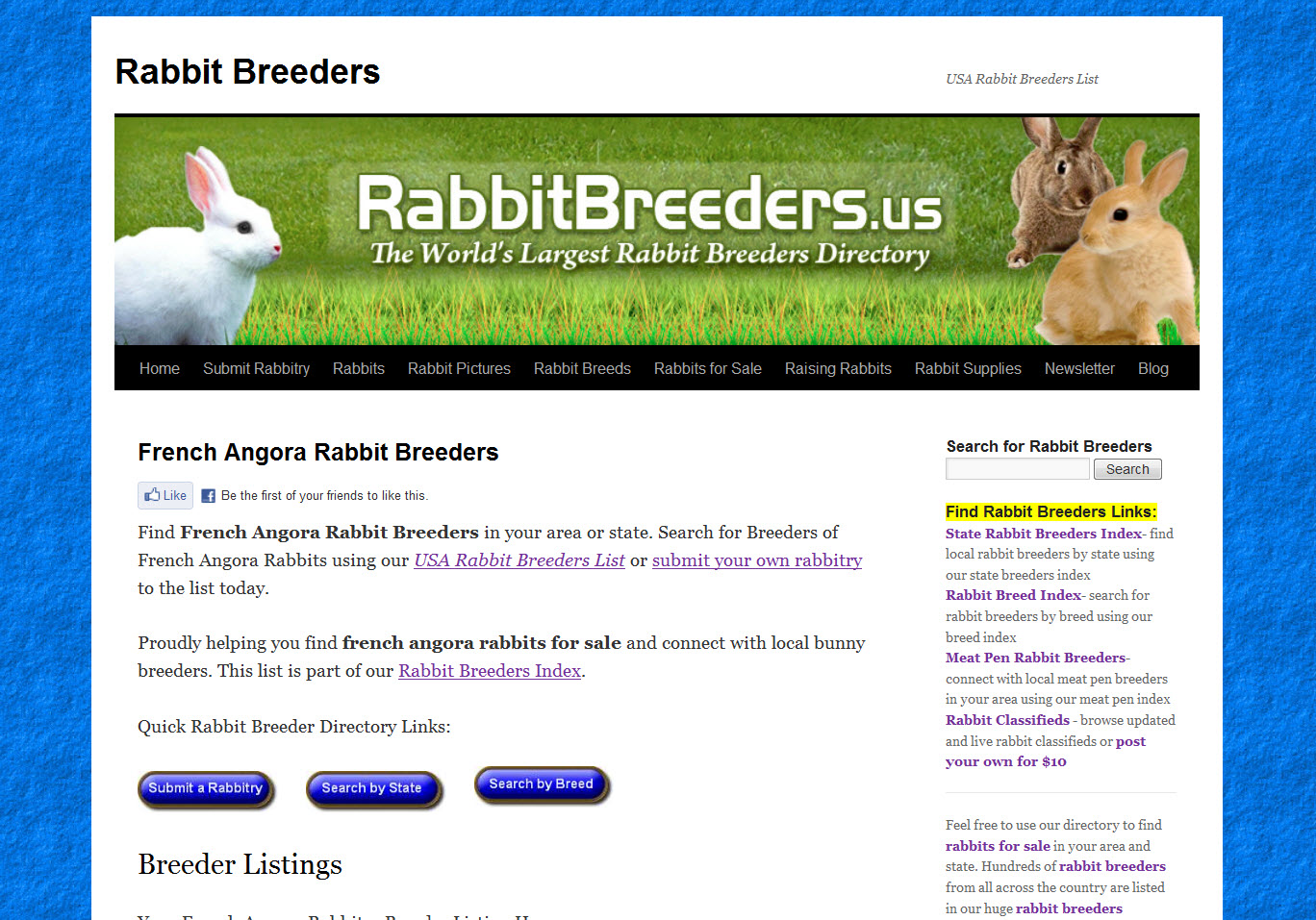 French Angora Rabbits for Sale