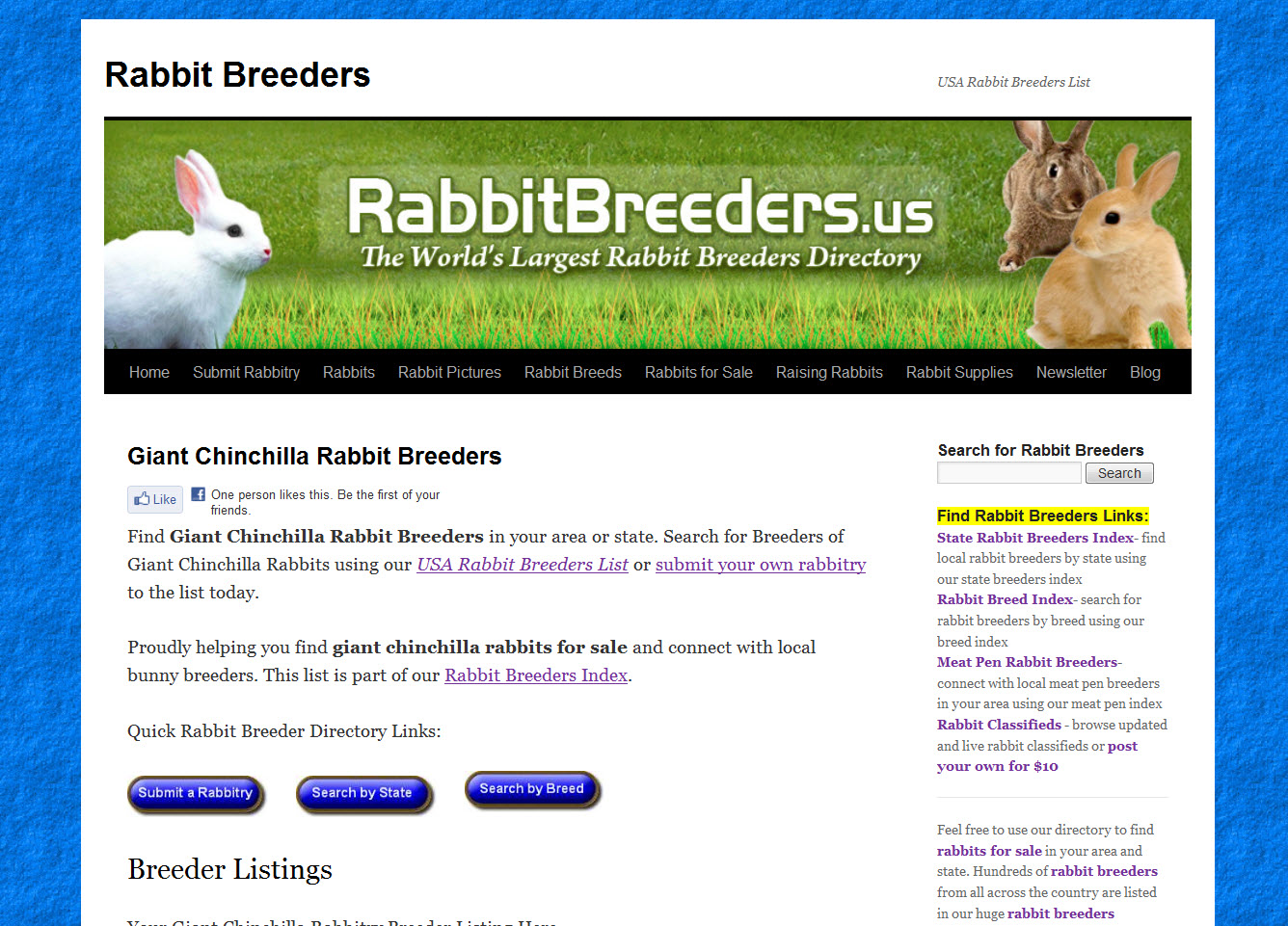 Giant Chinchilla Rabbit Breeders