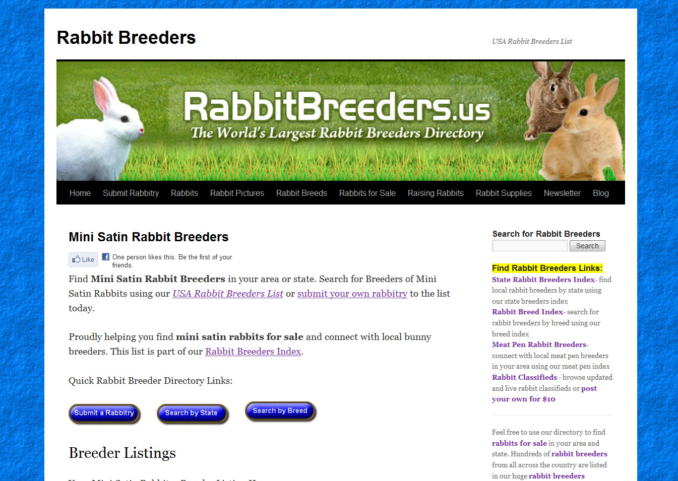 Mini Satin Rabbit Breeders
