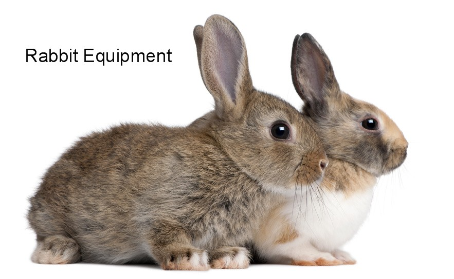 Rabbit Equipment