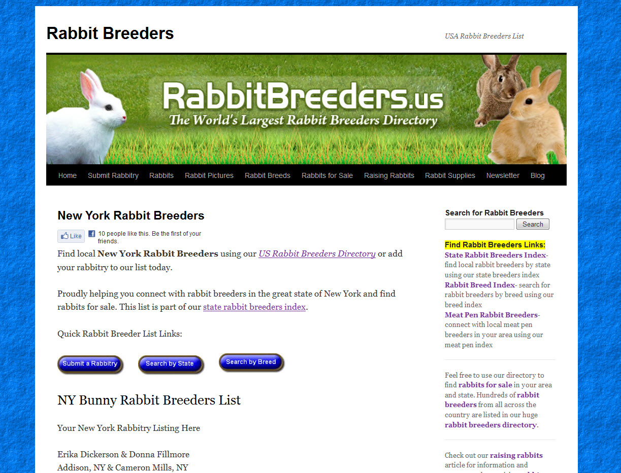 Rabbits for Sale in Syracuse, NY | USA Rabbit Breeders