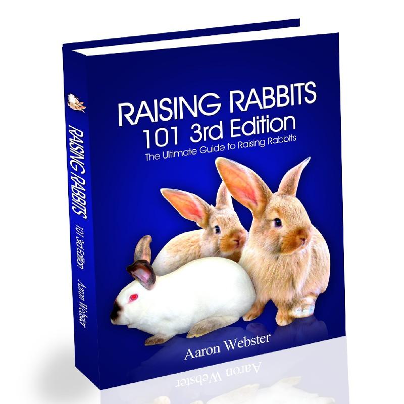 Raising Rabbits