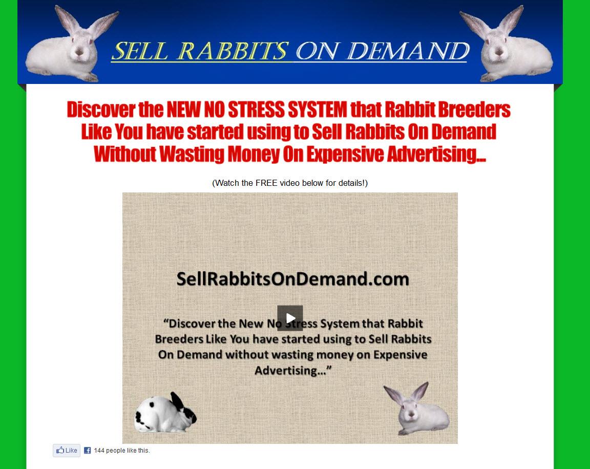Sell Rabbits